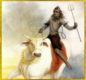 shiva with nindhi